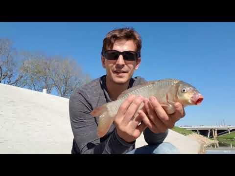 Houston's Best Kept Fishing Secret, Part 2