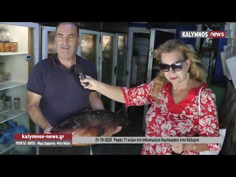 21-10-2020 Ροφός 11 κιλών στο Ιχθυοπωλείο Καμπουράκη στην Κάλυμνο