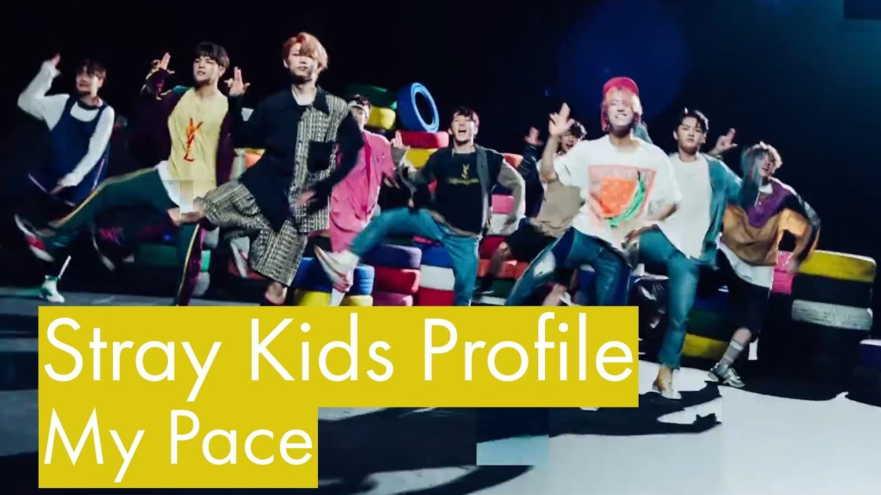 Stray Kids Profile |