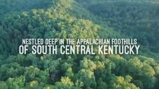 Amazing 150 Acre Prepper Land for Sale in the Cumberland Plateau