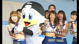 エイジアエンジニアズーちゃん #hirune5656 #kawaii #mascot #ズーちゃ...