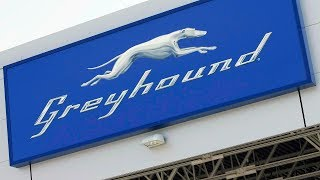 Greyhound had pushed for government support