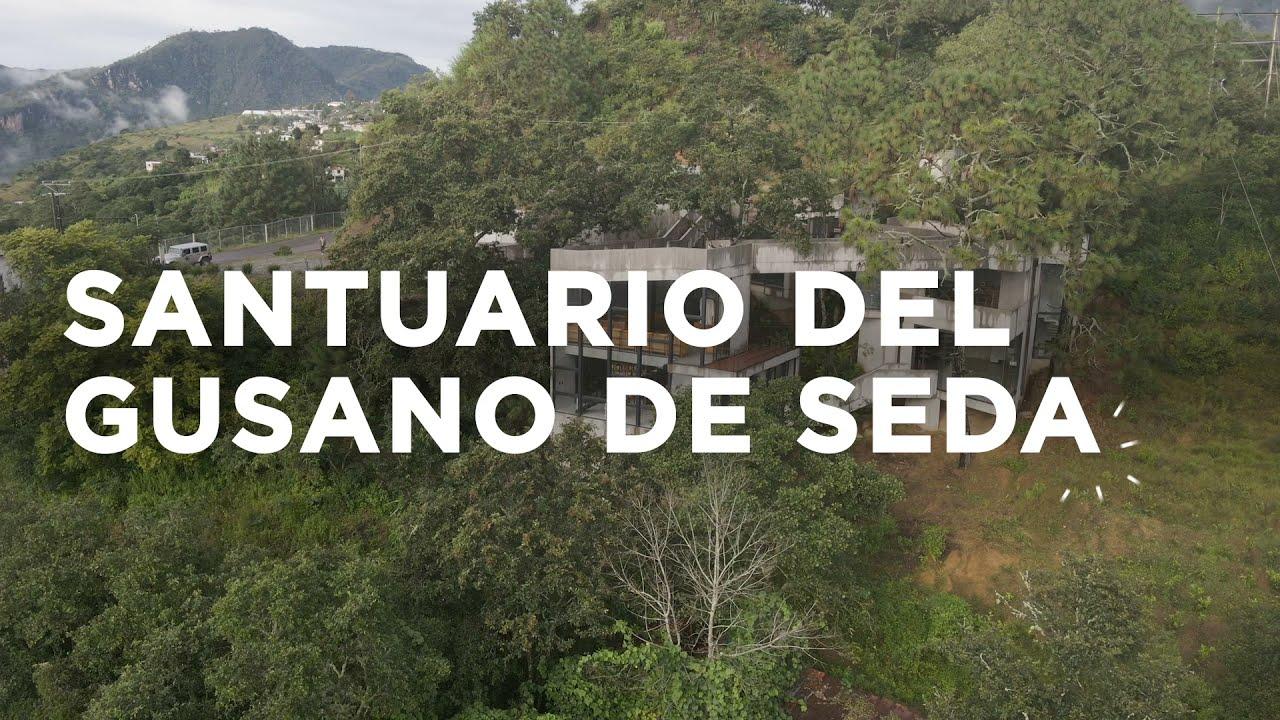 Detrás del Concreto - SANTUARIO DEL GUSANO DE SEDA