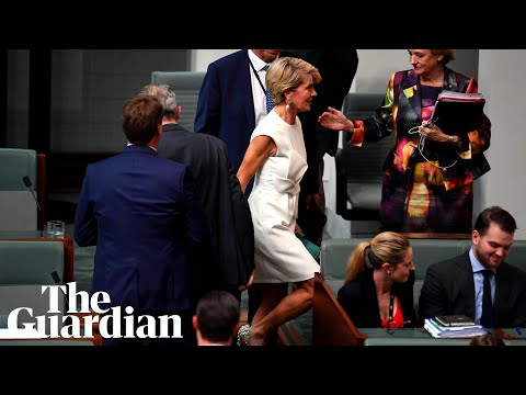Julie Bishop, first woman of the Liberals, bows out behind her gleaming white shield