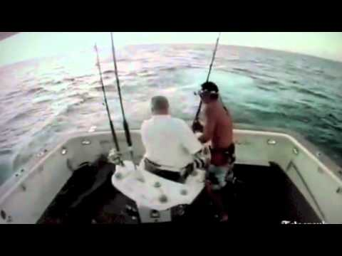 Fisherman Falls Overboard From Marlin Attack!