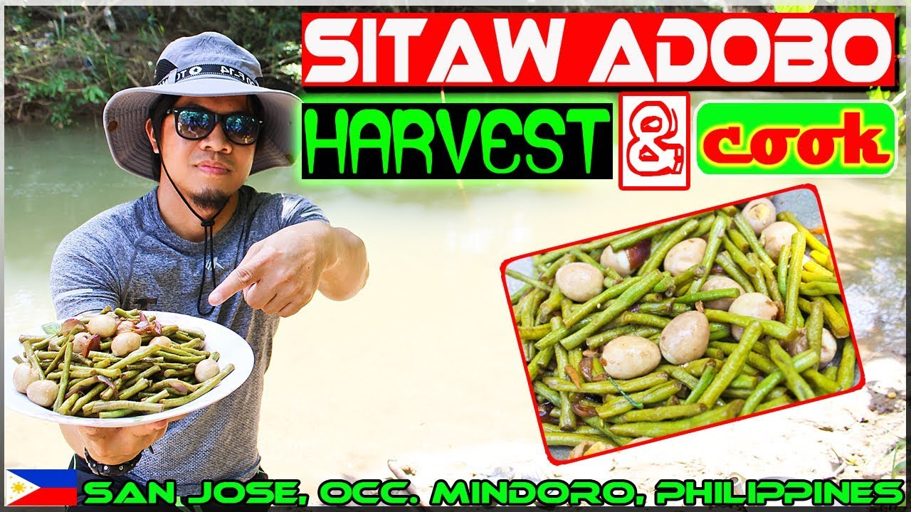 Harabas EP31 - String Beans and Quail Eggs Harvest and Cook  {Adobong Sitaw}