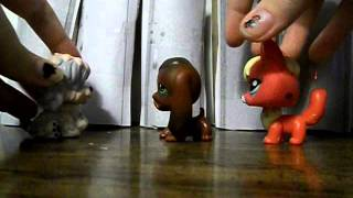 "Lps popular life Episode #1 ""Old friends,New enemy's"""