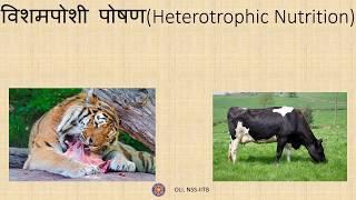 जैव प्रक्रम (Life Processes) कक्षा 10 विज्ञान (Class 10 Science) - Hindi