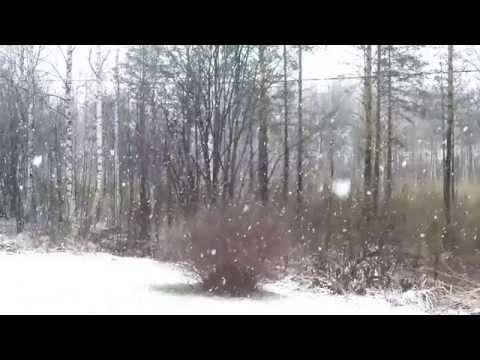 """""""Heart of Nowhere"""" Kevin MacLeod  & Slow motion 240 fps in HD snowfall"""