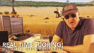 How to Write Music For Documentaries: Wildlife