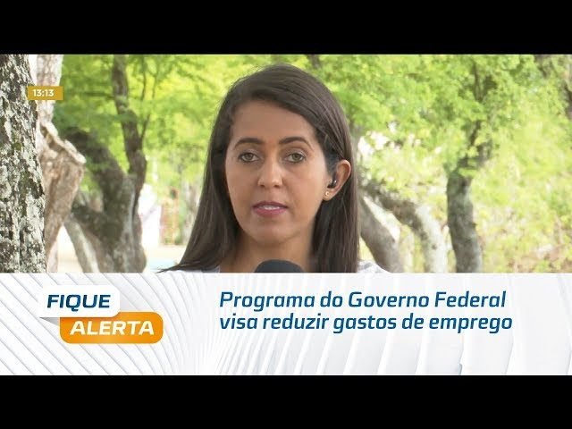 Programa do Governo Federal visa reduzir gastos de empregador com INSS e FGTS