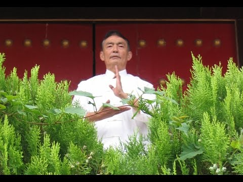 Classical Chinese Life Science – Fengshui and Bazi