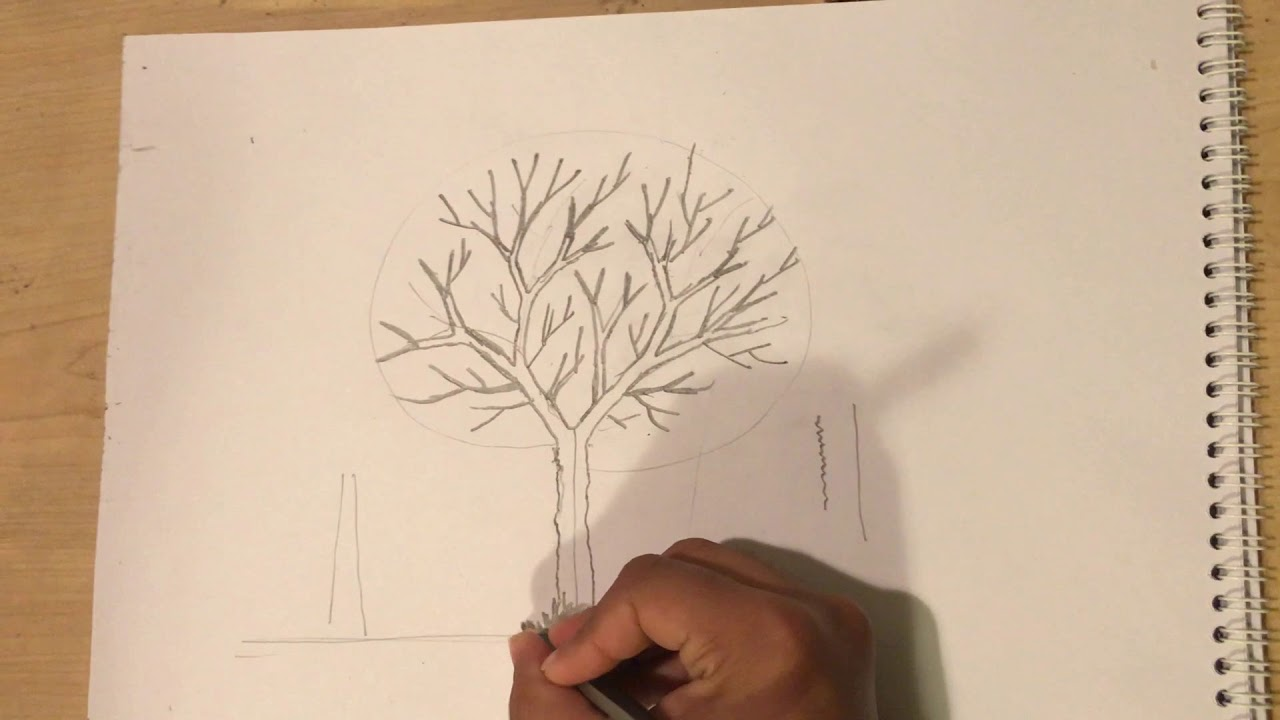 Draw A Dead Tree With V Youtube