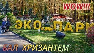 бал Хризантем в Фельдман Экопарк видео прогулка Харьков 2019