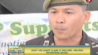 NEWS5E | GMC: GIANT CLAMS | MAY 20, 2013