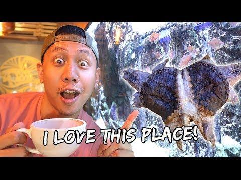 Awesome Aquarium Cafe In Manila | Vlog #742