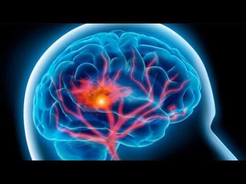 حقائق جديدة لآلية تطور الخلايا العصبية في الدماغ  - نشر قبل 2 ساعة