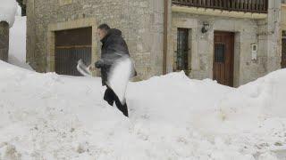 Cerrados por nieve los puertos de Lunada, La Sía y Estacas de Trueba (Burgos)