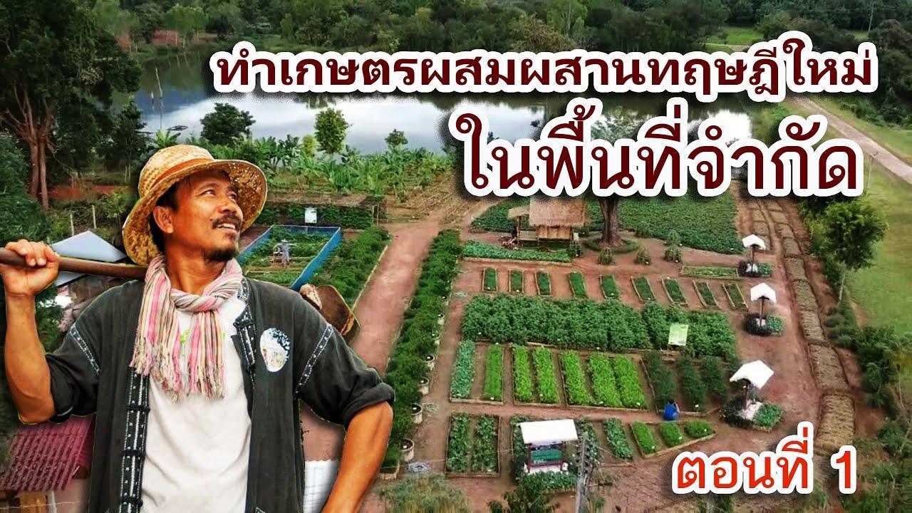 เกษตรผสมผสานทฤษฎีใหม่ บนพื้นที่จำกัด ตอนที่ 1