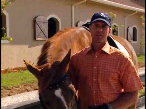 Top Performance Riders Discuss the Benefits of Purina® Strategy® Horse Feed