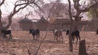 Climate change in Sahel