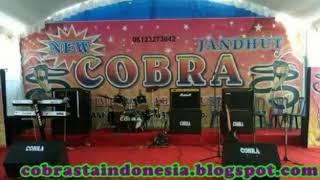 Download lagu New Cobra Kisah sang Rasul versi jandut MP3