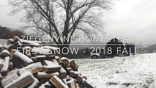 First Snow - Fall 2018