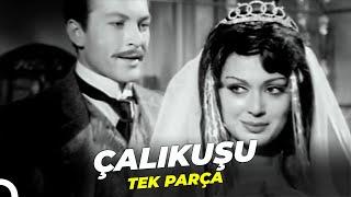 Çalıkuşu  Türkan Şoray Yeşilçam Filmi Tek Parça (Restorasyonlu)