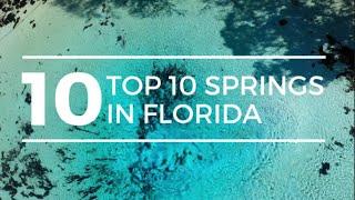 TOP 10 SPRINGS in FLORIDA | Best Florida Springs | Florida Springs | Ginnie Springs