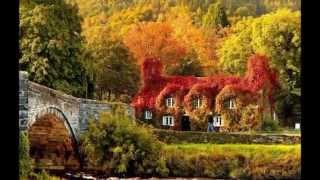 Осенний поцелуй!