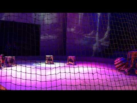 Shanghai Circus 上海马戏团-欢乐马戏