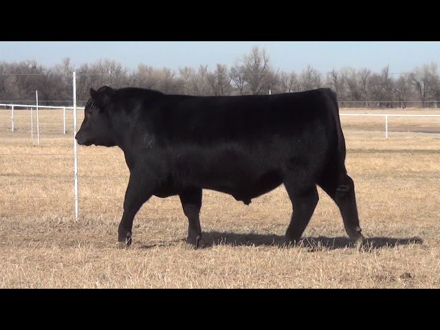 Express Ranches Lot 10
