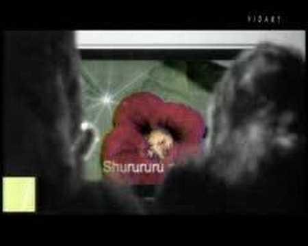 Comercial Gorilas Karaoke Conexion Digital Falabella