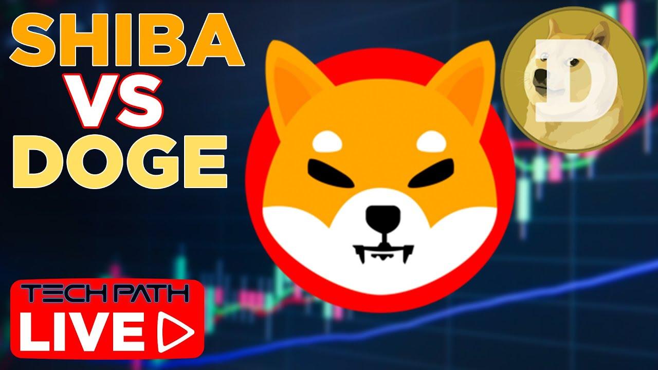 Meme Coin Shiba Inu Surpasses Doge By Market Cap As ...