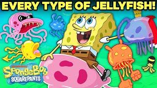 EVERY Jellyfish in Bikini Bottom!  | SpongeBob