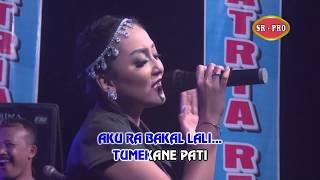 Top Hits -  Elsa Safira Kangen Kuto Batu Official