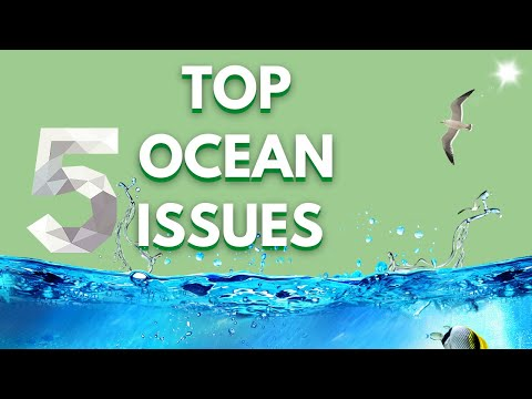 Top 5 OCEAN ISSUES & THREATS(Let's save the Planet)