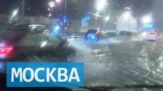 Шторм в Москве: поваленные деревья, потоп и отложенные рейсы