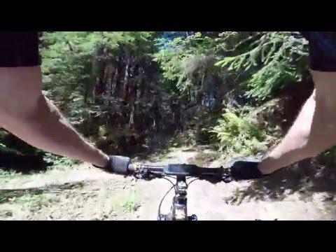 20160417 Purisima Creek Redwoods - Grabtown Gulch Trail