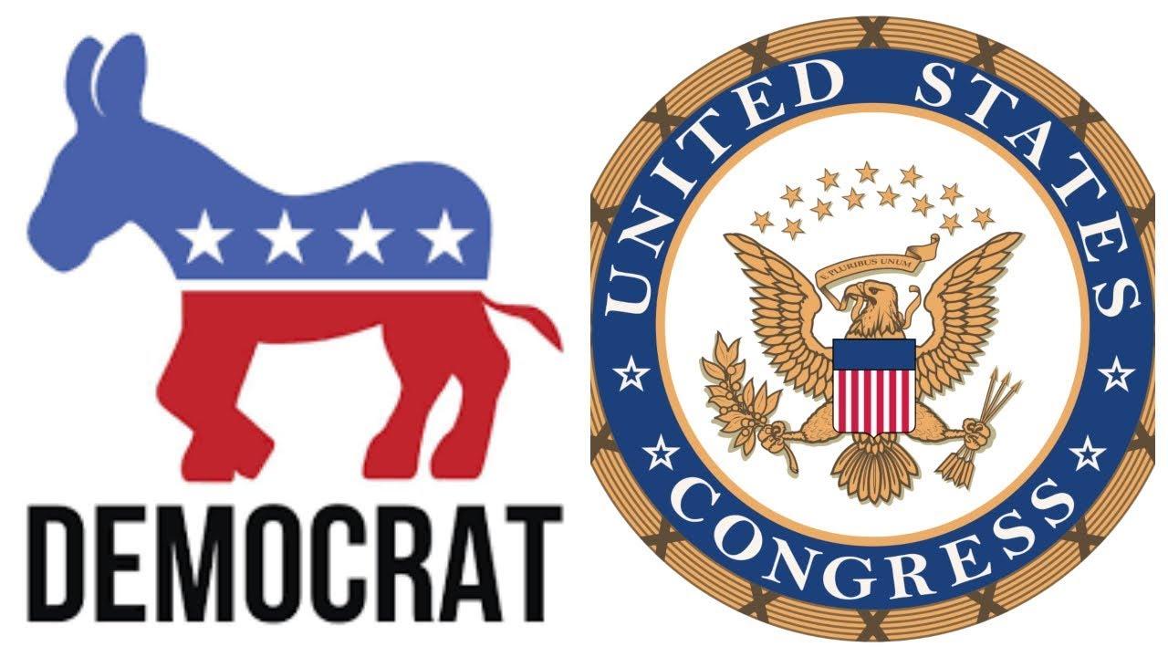 ماذا تعني سيطرة الديمقراطيين على مجلس النواب الأميركي؟