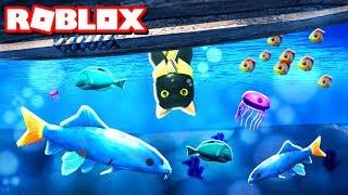 RO-FISHING!!   Roblox Adventures