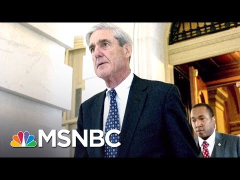How Robert Mueller Is Prosecuting Russia Probe Like A Mob Case | The 11th Hour | MSNBC
