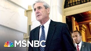 How Robert Mueller Is Prosecuting Russia Probe Like A Mob Case   The 11th Hour   MSNBC