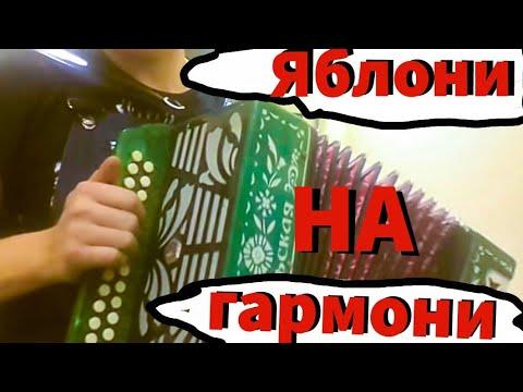 ЛЯПИС 98 • КОГДА ЯБЛОНИ ЦВЕТУТ ☆ ОДЕССА ЮМОРИНА 2017