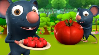 Chuha Aur Tamatar 3D Animated Hindi Moral Stories for Kids चूहा और टमाटर Rat Panchatantra Tales