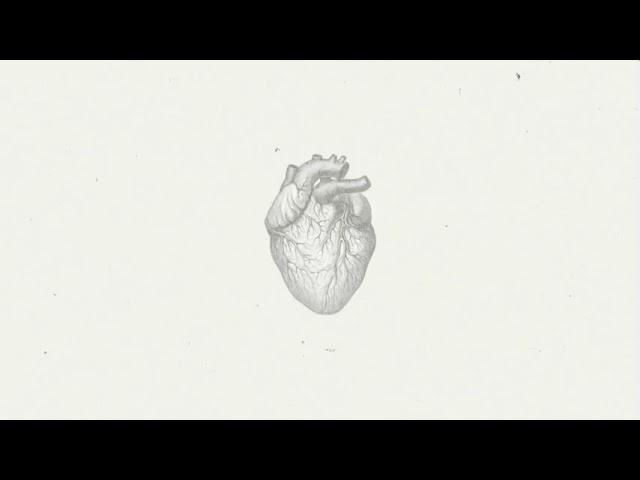 Reel del canal - Por amor a la música