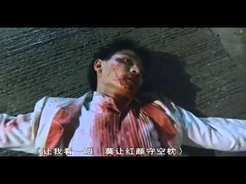 青春無悔-袁鳳瑛