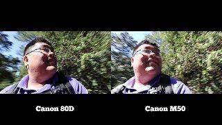 Canon M50 vs Canon 80D Video Test