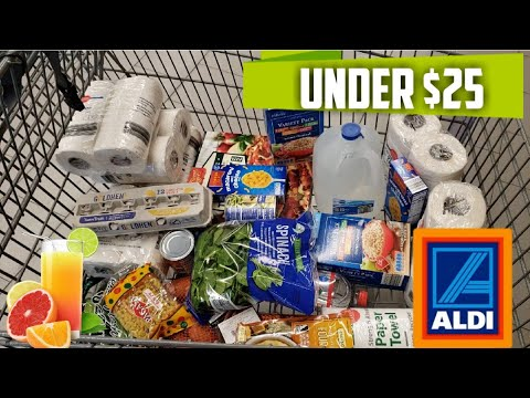 Aldi Grocery Haul less then $25 No coupons