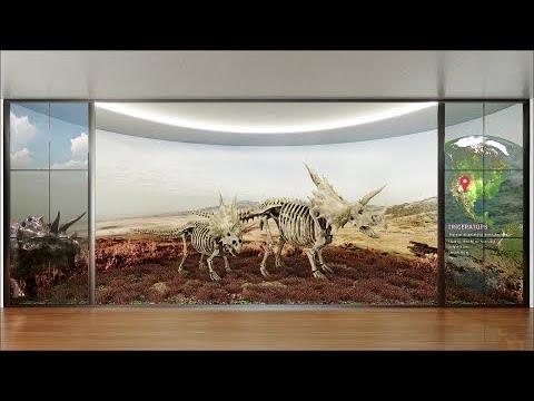 LG Amazing Display – LG Amazing Display